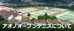アオノオープンテニス